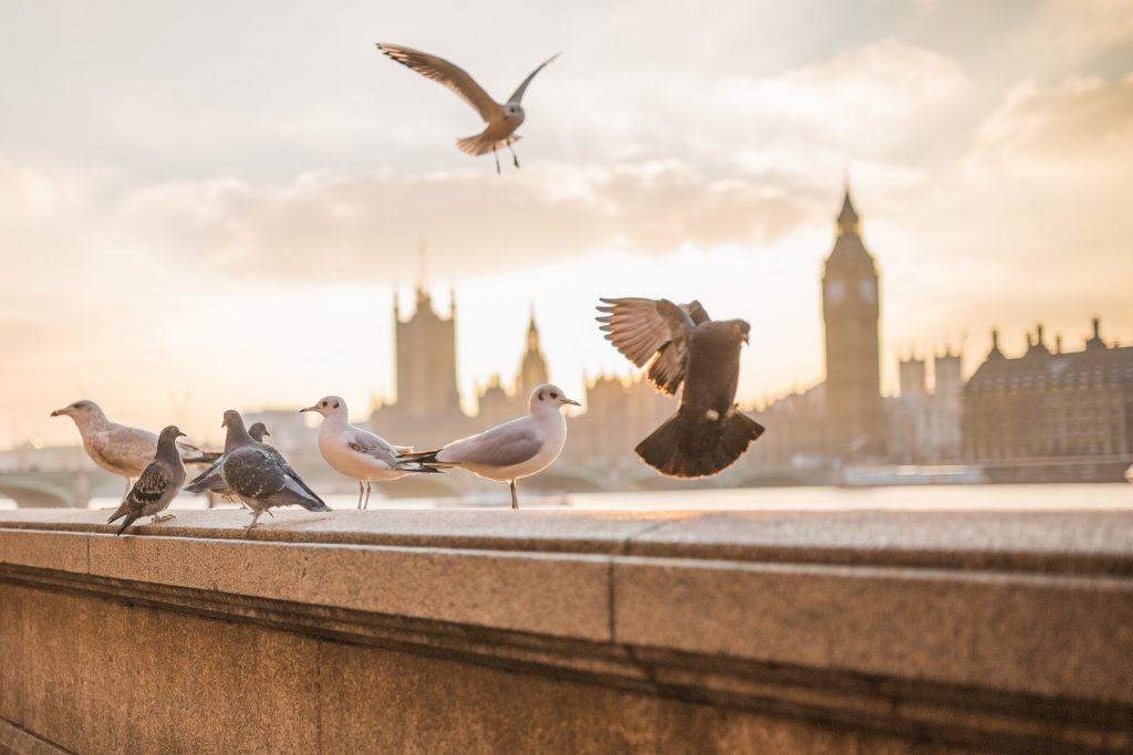 London: September