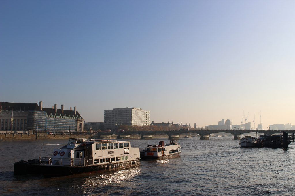London: Thames River Cruise